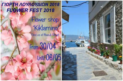 """Γιορτή λουλουδιών εν όψει Πρωτομαγιάς στο Ανθοπωλείο """"Κυκλάμινο"""" στην Ύδρα"""