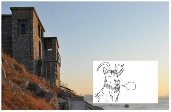DAVID SHRIGLEY: LAUGHTERHOUSE in Hydra's SLAUGHTERHOUSE