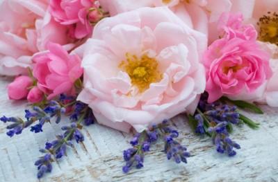 Γιορτή λουλουδιών στο Ανθοπωλείο «Κυκλάμινο»